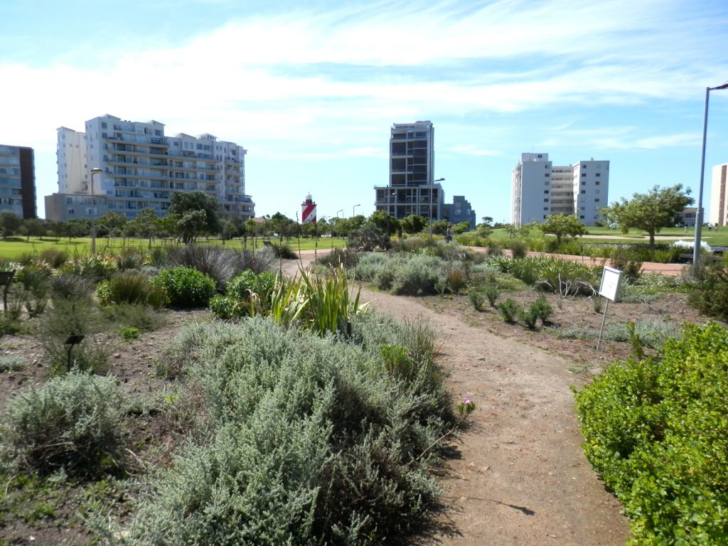 mouille-point-apartment-blocks-from-park