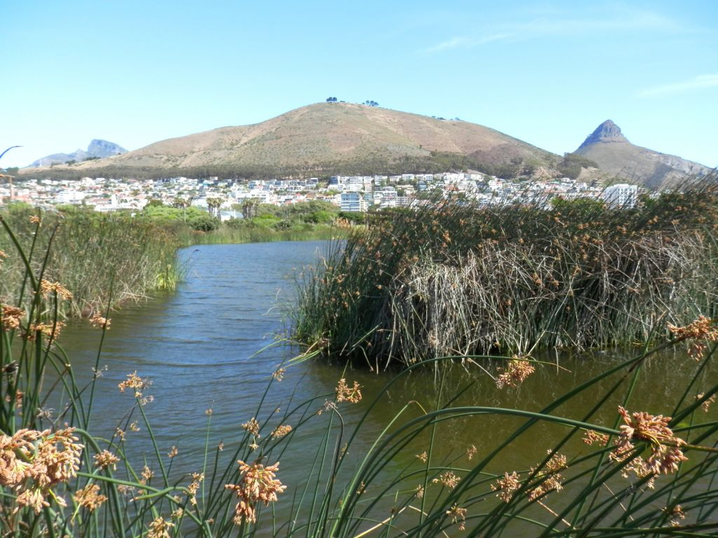 Signal hill over water